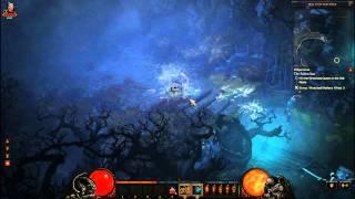 Diablo 3 Gameplay on Acer Aspire AS5755G-6823 Laptop