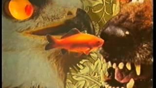 Robert Armani - Circus Bells (Hardfloor Remix) (Official Video)