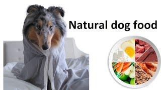 Natural dog food. собака. натуральное кормление. USA. Dog food.