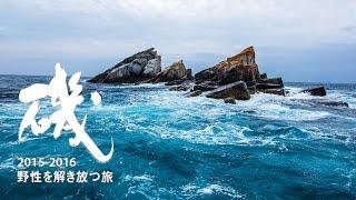 磯プロモーション動画 2015-2016 『野性を解き放つ旅』.
