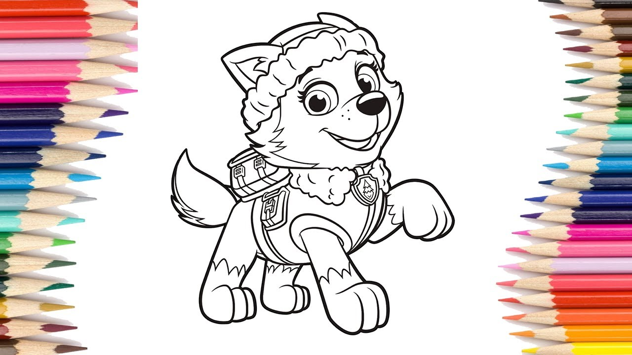 Paw Patrol Everest And Skye Coloring Page Colors
