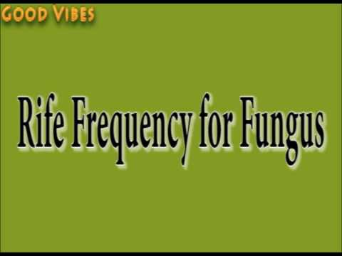 Rife Frequency for Fungus Healing & Treatment Binaural Beats | Good Vibes