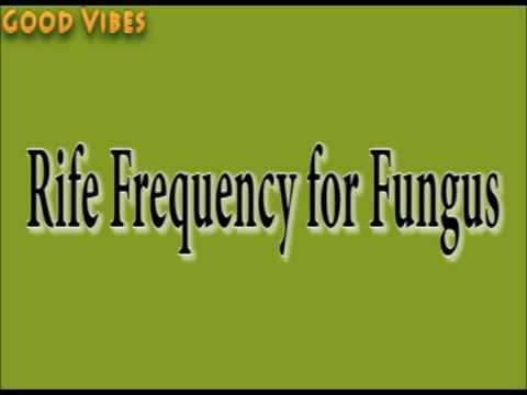 Rife Frequency for Fungus Healing & Treatment Binaural Beats | Good Vibes