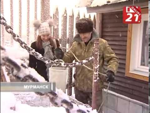 Телекомпания ТВ 21 Все новости Мурманска и Мурманской области  Новости  Городская деревня