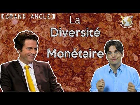 Philippe HERLIN : Pour une diversité monétaire !