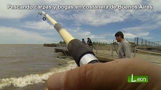 Pescando carpas y bogas en costanera de Buenos Aires