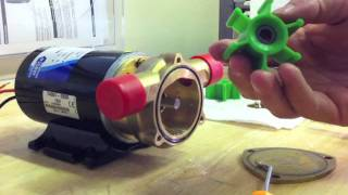 HOW TO: Jabsco Ballast Puppy Pump Green Impeller Replacement