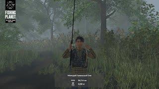 рыбалка часть 4 ПОЙМАЛ КАНАЛЬНОГО СОМА