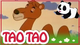Tao Tao - 7 -  היא-הגמל הלבן