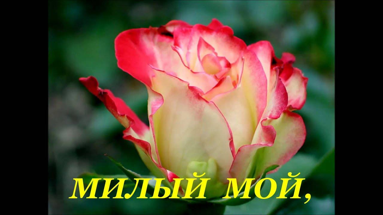 Поздравление с днём рождения женщине в стихах русских поэтов фото 346