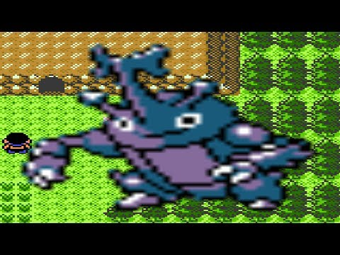 How To Find Heracross In Pokemon Gold And Silver