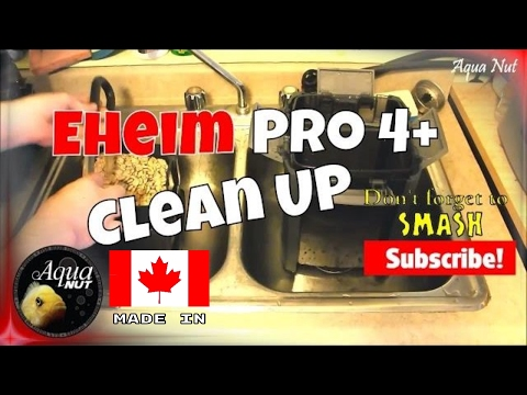 Cleaning Eheim Pro 4+ 350   How to Maintain Canister Filter Clean Up