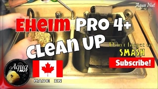 Cleaning Eheim Pro 4+ 350 | How to Maintain Canister Filter Clean Up