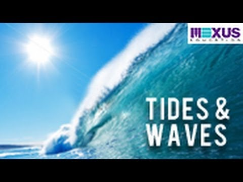 tides and waves Beneath cursed tides is a quest released on 14 december 2015 it is based on a runelabs suggestion about the mysterious vanishing of.