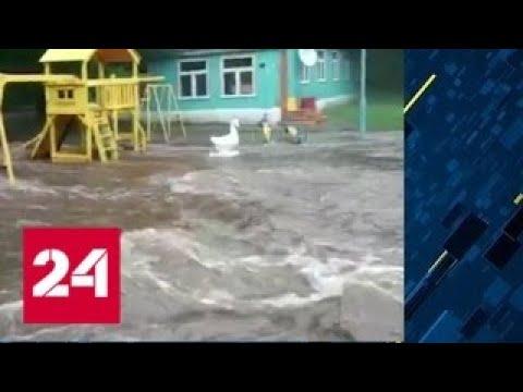 Тайфун 'Данас' обрушил