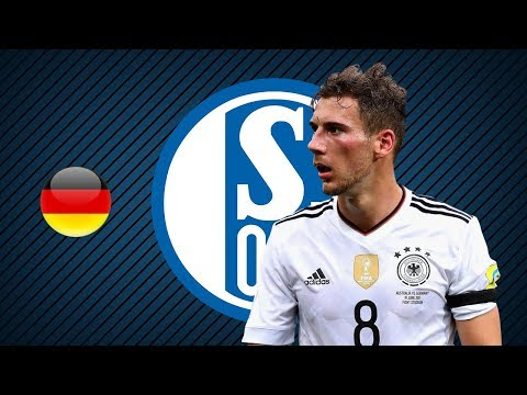 LEON GORETZKA | Schalke 04 | Goals, Skills, Assists | 2017/2018 (HD)