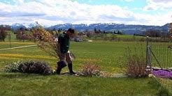 Pflanzanleitung: Container-Pflanzen einpflanzen - Standort, Zeitpunkt, Pflanzung, Pflege