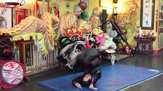 Martial Arts Shoulder Rolls - Injury Prevention And Evading