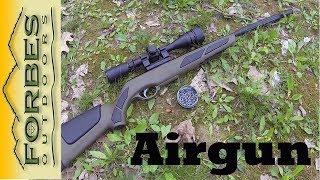 Fun with a Gamo Air Rifle