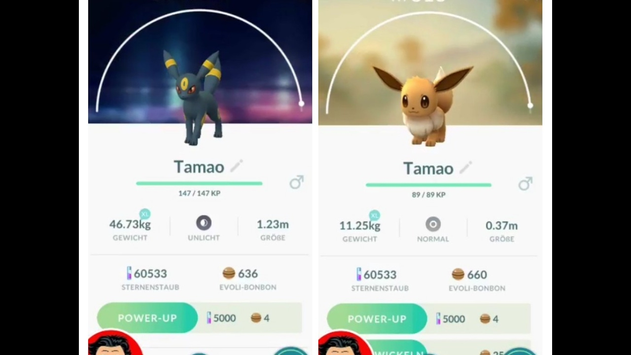 Pokemon Go Rabauz Entwickeln
