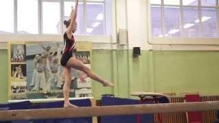 Спортивная гимнастика. Великие Луки