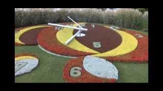 Цветочные часы. Женева. Flower Clock. Geneva. 花時計。ジュネーブ。花钟。日内瓦。