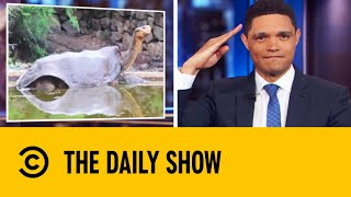 sex-marathon-saves-a-tortoise-species-from-extinction-the-daily-show-with-trevor-noah