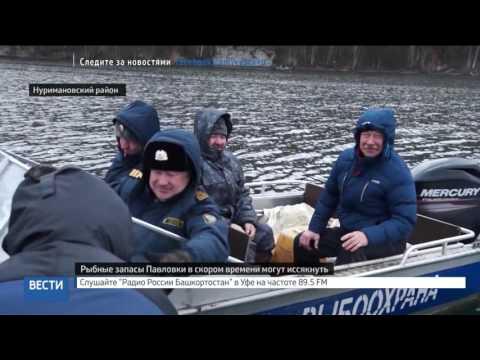Вести-24. Башкортостан 01.11.16 19:00