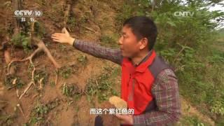 20160928 地理中国  马陵谜案