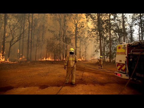 Concerns NSW Bushfires Could Link Up In Coming Days