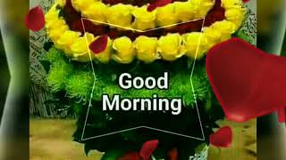 GOOD MORNING video  - Whatsapp, Wishes, Quotes, Message, Greetings