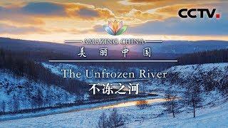 《美丽中国》 不冻之河 | CCTV