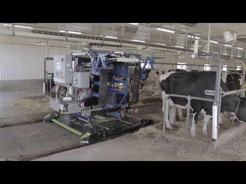Tie-Stall AMS Milking Robot by Milkomax