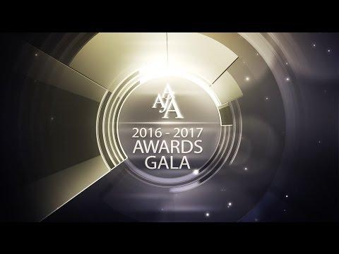 2016-2017 American Advertising Awards Gala