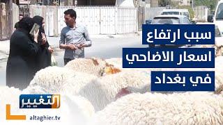 ارتفاع اسعار اضاحي العيد في بغداد .. والسبب