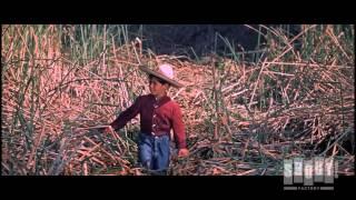 Dinosaur Attacks Child - The Beast Of Hollow Mountain (1956)