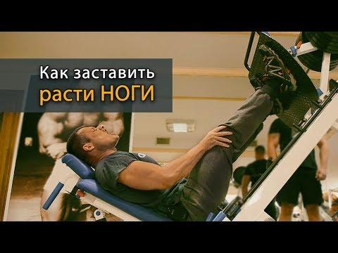 Как заставить расти ноги: тренировка на ноги одним упражнением