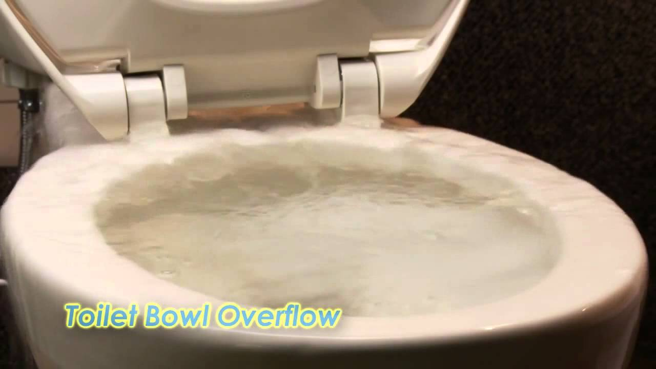 Introducing Toilet Guardian, Save Water & Eliminate Toilet Overflows ...
