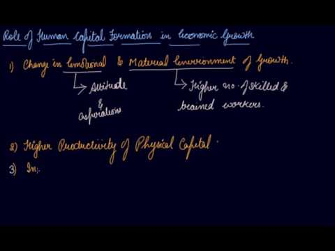 Role of Human Capital Formation | Class 11 Economics Human Capital Formation In India