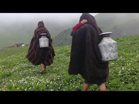 Takasera Rukum.  way of  sheeping  farming (Mid WESTERN PART OF Nepal)