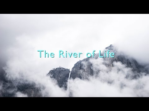 The River of Life  (David Wilkerson)