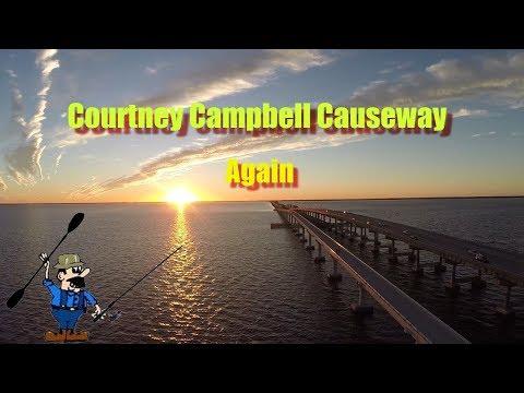 Courtney Campbell Causeway Again        Hank Pretz Kayak Fishing