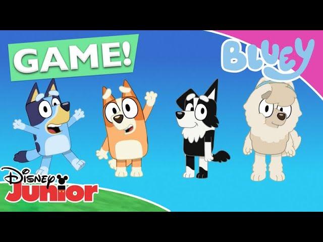 Σε ποιον ανήκει η Φιγούρα; | Μπλούι | Disney Junior Ελλάδα