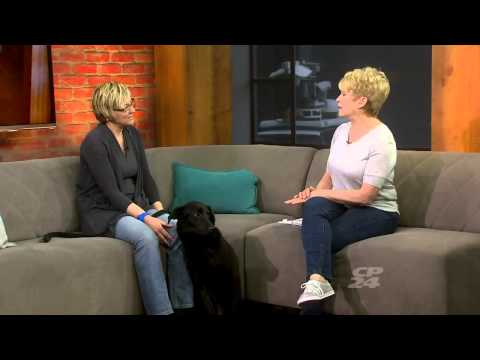 Just Paws Animal Rescue on CP24 Animal House Calls (Hankie)