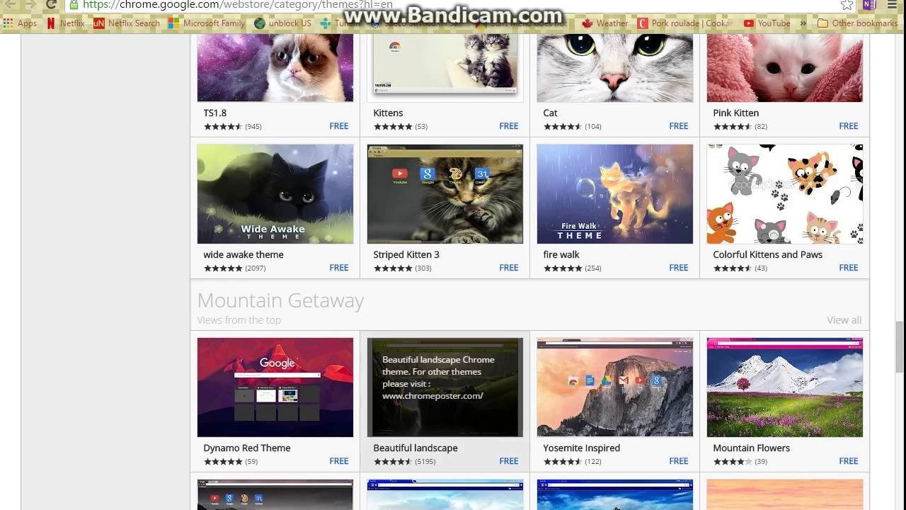 Google themes kittens - How To Get A Google Backdrop