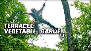 Terraced Vegetable Garden - E.5 - Maintenance, Injury Update & Tori Climbs a Tree