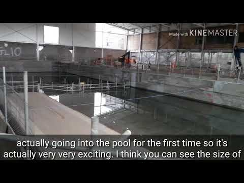 50m pool at Alan Higgs Centre