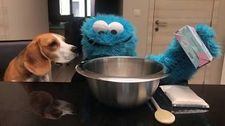 Cookiemonster and Dogs make DIY Dog Cookies : Funny Dogs Louie and Marie