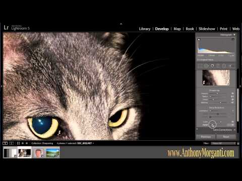 Learn Lightroom 5 - Part 5: Sharpening & Noise Reduction (Training Tutorial)