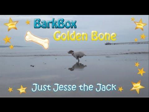 BarkBox Golden Bone Just Jesse the Jack